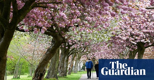 Care homes in England: are you visiting relatives outdoors now the rules have changed?